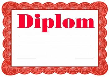 Diplom D21