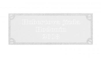 Poháry.com Štítek kovový stříbro 47x17 mm