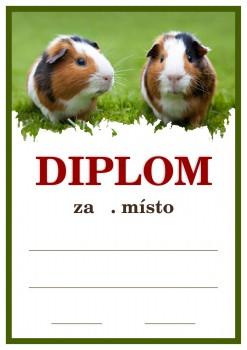 Poháry.com Diplom D11 kynologie