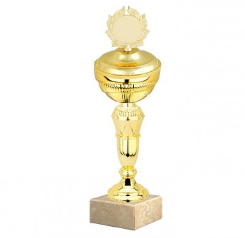 Poháry.com Sportovní pohár E033.4 GOLD s víkem