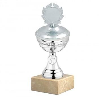 Poháry.com Sportovní poháry Si005.2 s víkem