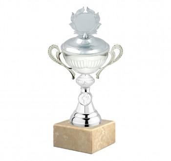 Poháry.com Sportovní poháry Si009.3 s víkem